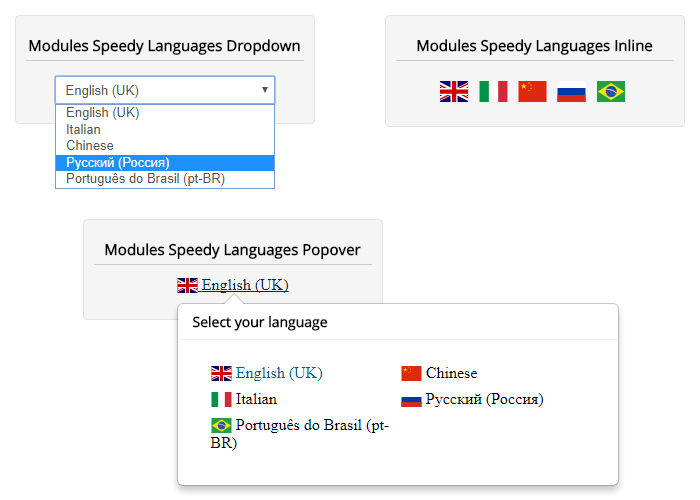 Speedy Translate - Front-end & Back-end language switcher module